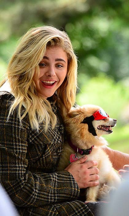 Chloë Grace Moretz's four-legged friend stole the show on the set of her latest photo shoot in New York. 