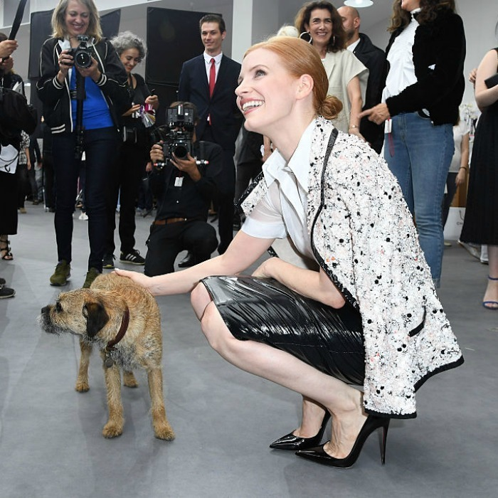 Man and fashion's best friend! Jessica Chastain made a furry pal after the Chanel Haute Couture show.