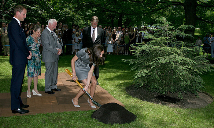 <h4>Nature activities