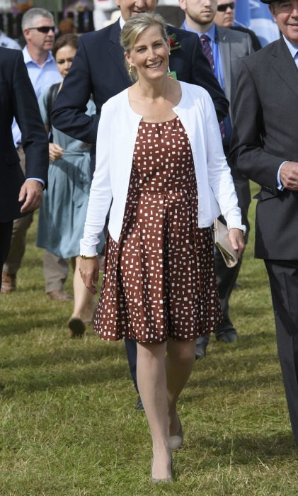 The Countess of Wessex wore a brown patterned sundress and white cardigan for a day out at the New Forest and Hampshire County Show on Tuesday.<br>