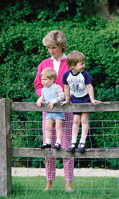 Ahead of the 20th anniversary of their mother's death next year, the royal brothers plan to open a garden and exhibition at Diana's former residence, Kensington Palace, where they both currently live.