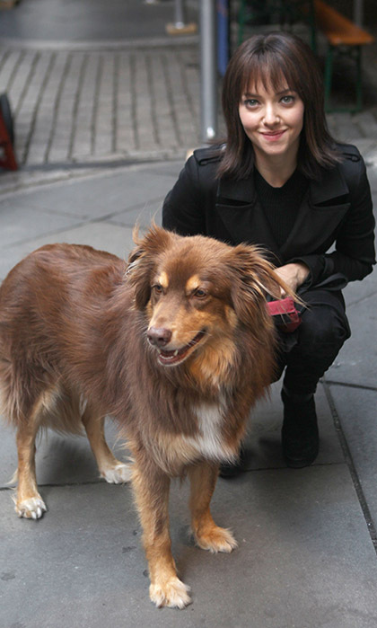 A brunette Amanda Seyfried hung out with her beloved pooch Finn on the New York set of the film <i>Anon</i>. 