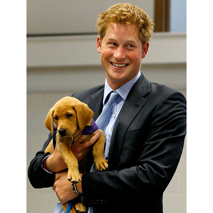 Happy 32nd birthday Prince Harry!