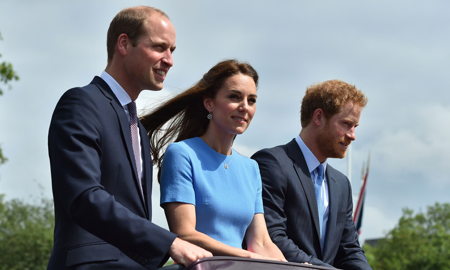 All proceeds from the book will be donated to the royal trio's campaign Heads Together.