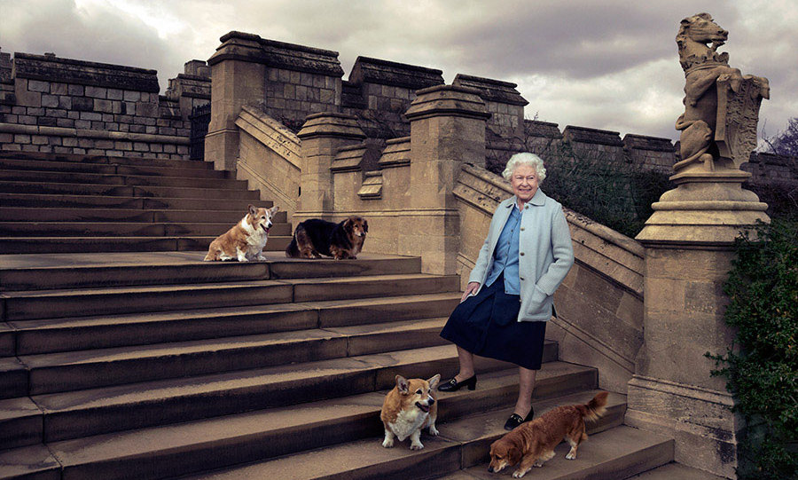 Her Majesty posed with her corgis for a special portrait in honour of her 90th birthday.