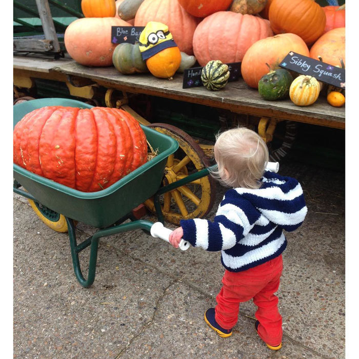Liv Tyler's little boy Sailor had big hopes for his Halloween pumpkin!
