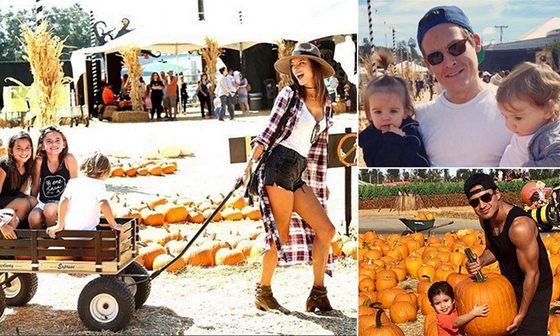One of Hollywood's favourite fall traditions is to celebrate the season at the local pumpkin patch. 
