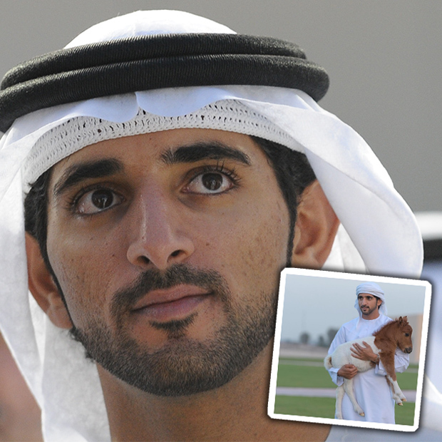 <h3>PRINCE HAMDAN BIN MOHAMMED AL MAKTOUM</h3>