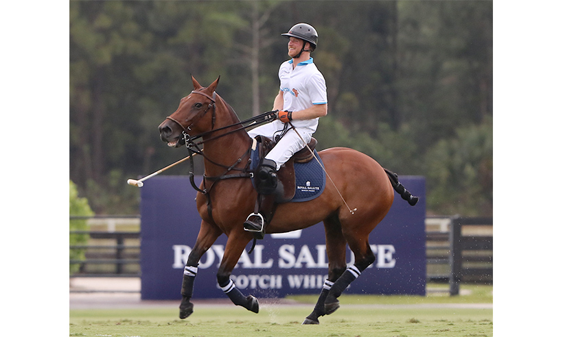 <h3>Get ready for some polo</h3>
