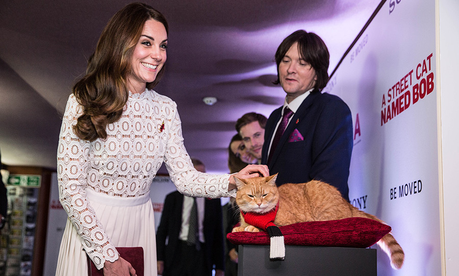 The Duchess wasn't sure if the feline was purring or growling. 