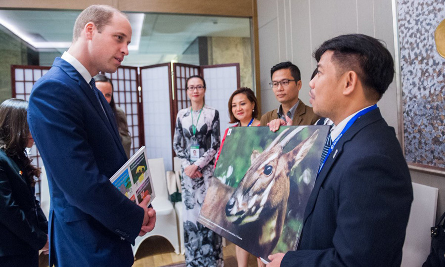 Kate's husband met with leaders from NGOs who are also dedicated to ending wildlife crime. 