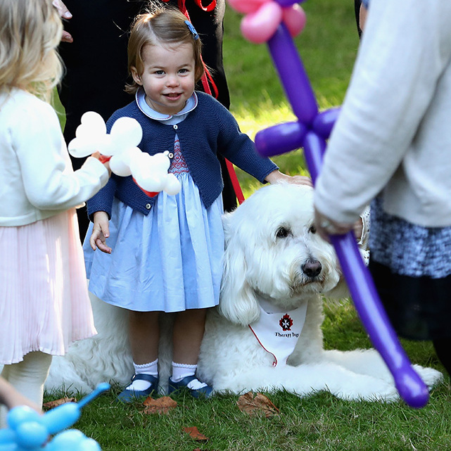 Cuddly toys for animal-loving Charlotte will be on the royal's Christmas list.<br>Photo: &copy; Getty Images