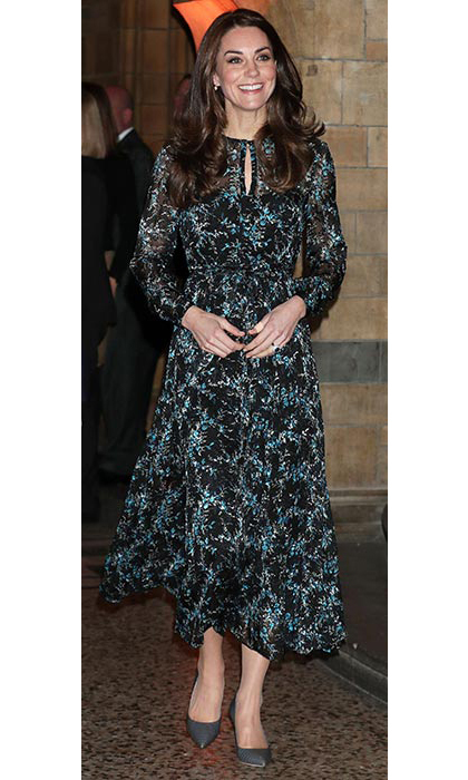 The Duchess of Cambridge wore a £375 dress from one of her favourite high street designers L.K. Bennett for an engagement at the Natural History Museum.