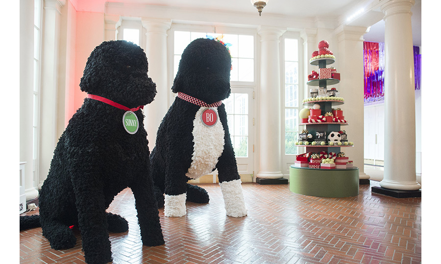 The White House staff are pulling out all the stops for the Obamas last Christmas at 1600 Pennsylvania Ave. The halls are overflowing with magical holiday displays, including some larger-than-life replicas of the family's pet pooches Bo and Sunny. 