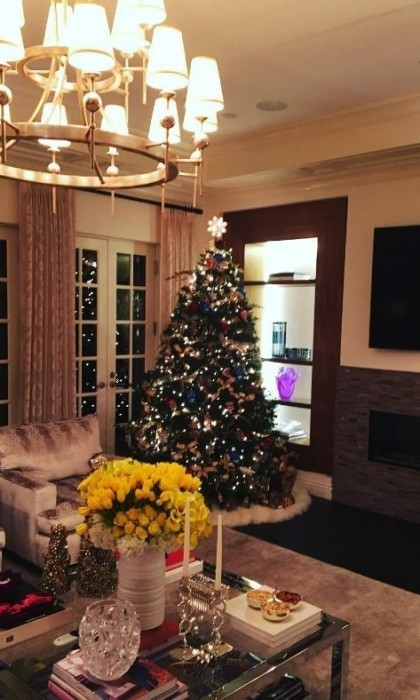 "Sofia Vergara showed off her and Joe Manganiello's pretty Christmas tree. The <em>Modern Family</em> actress couldn't contain her excitement as she shared the photo writing, ""It's up!""