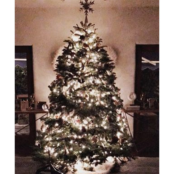 Jessica Alba's tree is big and bright! 