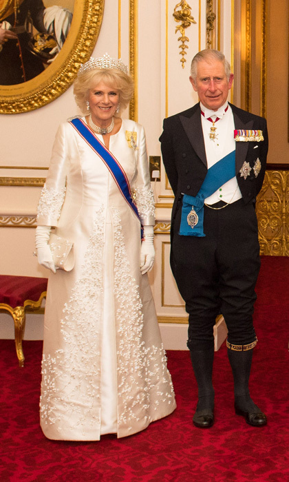 Camilla donned a Bruce Oldfield gown, which she accessorized with the Boucheron Tiara, for the 2016 Diplomatic Reception at Buckingham Palace.