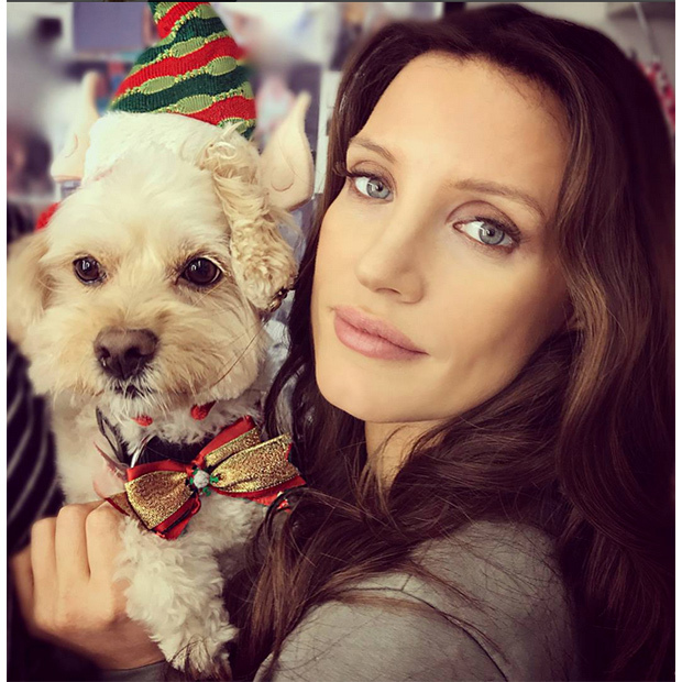Jessica Chastain's pup Chap dressed to impress as the actress headed home after wrapping up filming in Toronto for the holidays. 