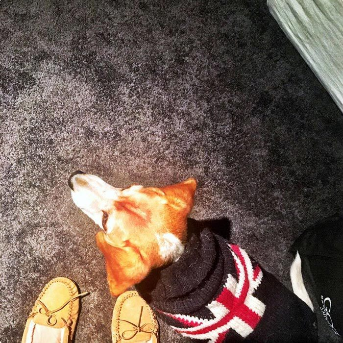 "<h3><a href=""/tags/0/meghan-markle/"" target=""_blank"">Meghan Markle</a></h3>