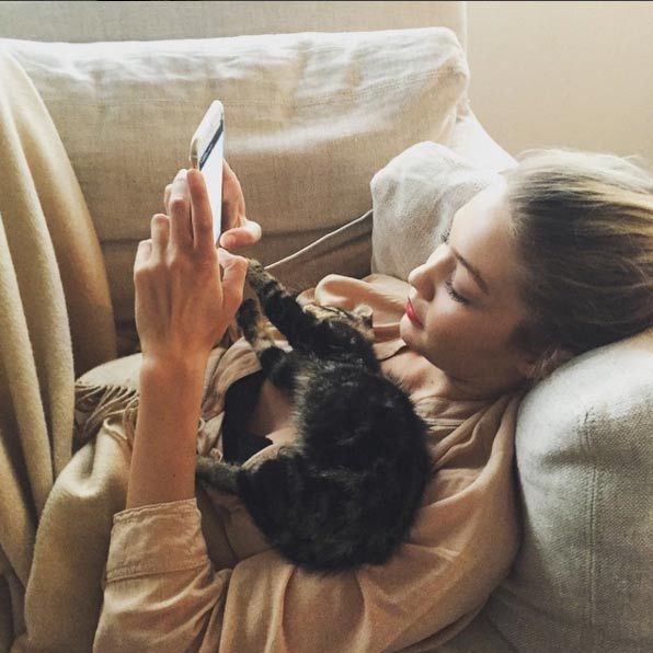 "<h3><a href=""/tags/0/gigi-hadid/"" target=""_blank"">Gigi Hadid</a></h3><p>Gigi Hadid set up a personal Instagram profile for her cat Cleo in early 2015, but hasn't managed to keep the profile updated due to her busy career.</p><p>Photo: &copy; Instagram</p>"