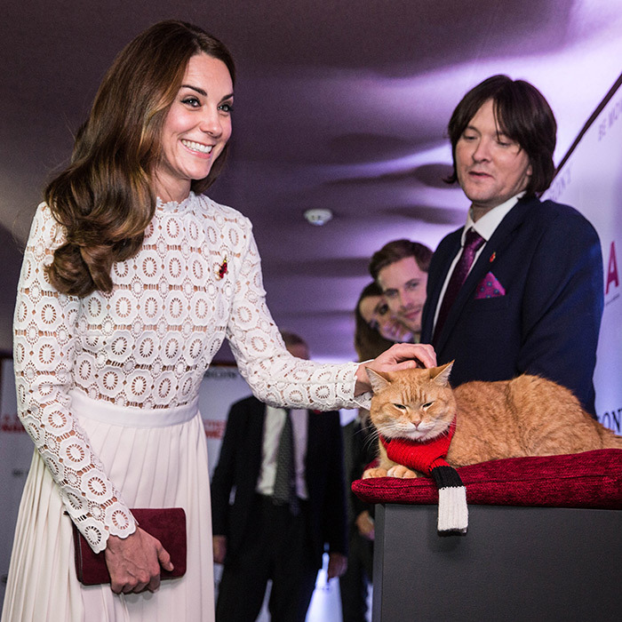The Duchess of Cambridge looked a little star struck when she met the feline lead in <em>A Street Cat Named Bob</em> at the film's premiere in London. 