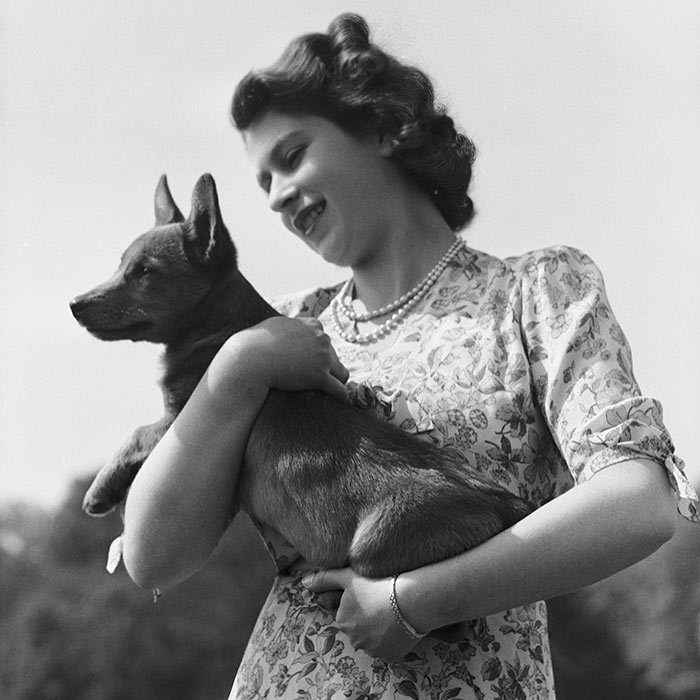 <h3>A REAL ANIMAL</h3><p>It was the gift that sparked one of the Queen's lifelong passions. In 1944, Princess Elizabeth received her first pet corgi, Susan, for her 18th birthday. The future monarch was so smitten with her pet (pictured here with Elizabeth at Windsor Castle) that she even joined her on her honeymoon two years later. In 1949, Susan had puppies. The Queen has overseen the corgis at the palace ever since.</p><p>Photo: © Getty Images</p>