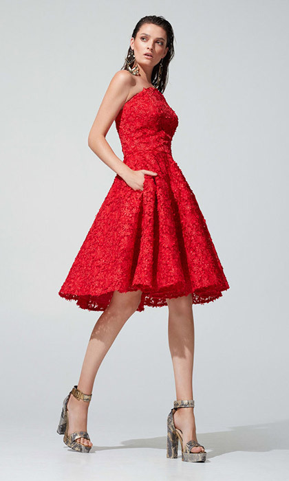 <h2>LUCIAN MATIS</h2>