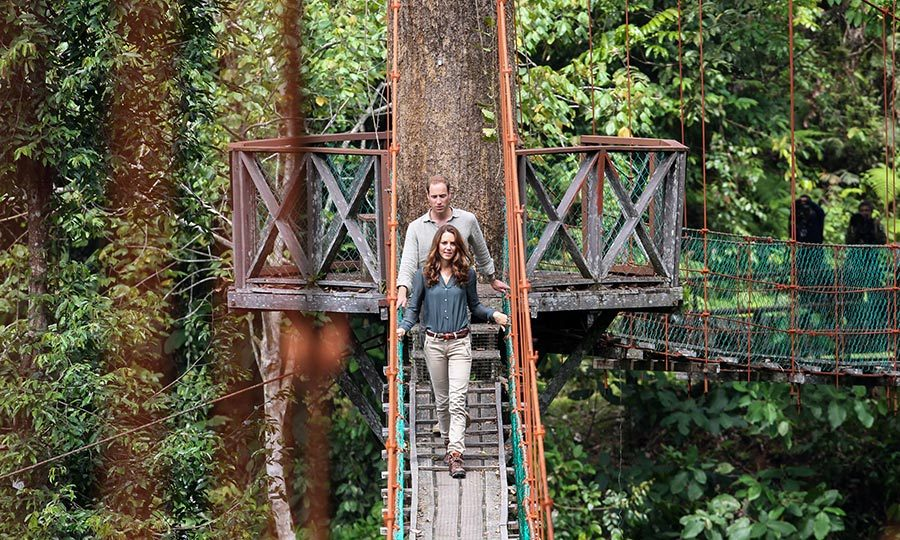 Who says you have to stay indoors to exercise? The Duke and Duchess of Cambridge enjoyed the sights and sounds of the rainforest in Danum Valley in 2012.