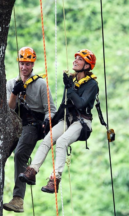 Heights? No problem! On the island of Borneo, the daring couple held hands as they rappelled down a tree at the Danum Valley Research Center in 2012. 