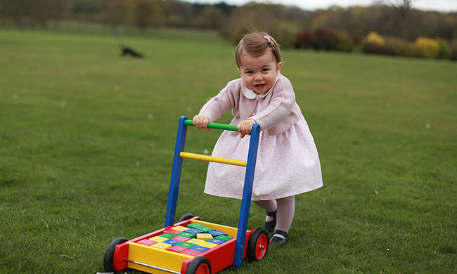 Princess Charlotte wore a M&H dress for her first birthday pictures.