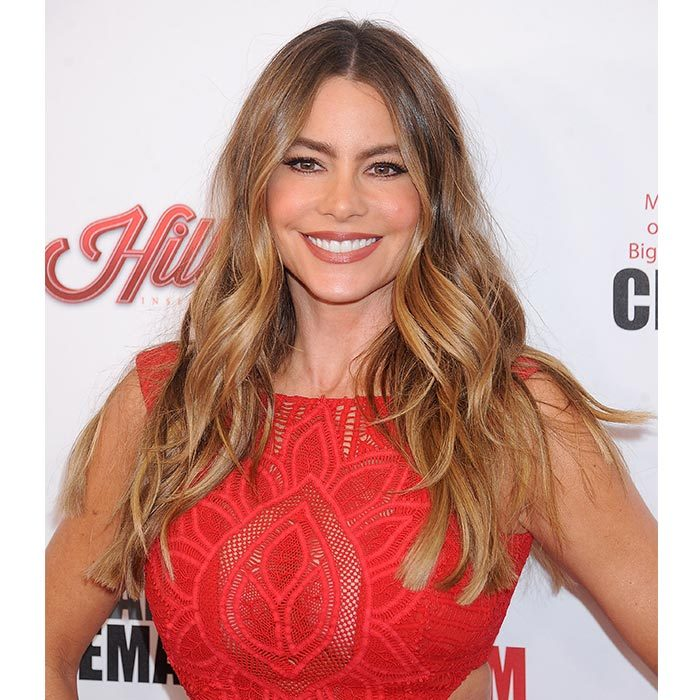 <h4>Sofia Vergara</h4>