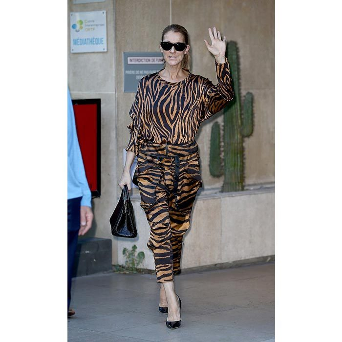 Celine showed off her wild side in a tiger-striped jumpsuit and black stilettos while in Paris on June 19.