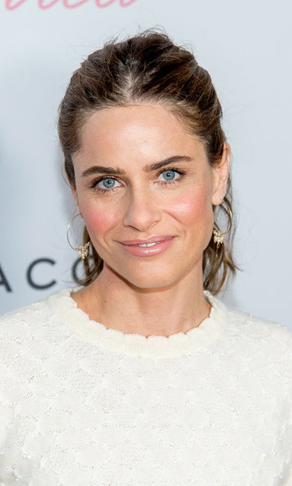 <h3>3. Amanda Peet</h3>