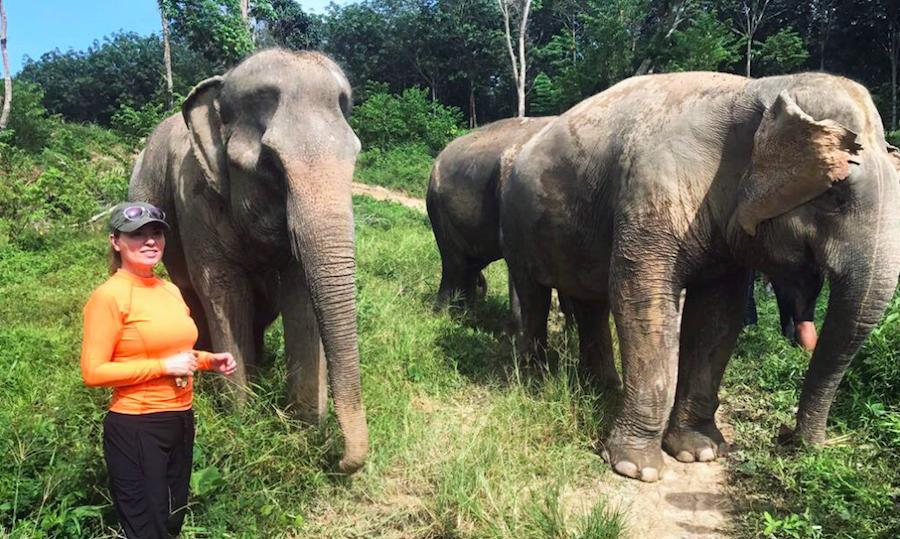 "Following the release of her video for her hit single ""Life's About to Get Good,"" Shania Twain escaped to the Phuket Elephant Sanctuary to ""recharge before the new album!""