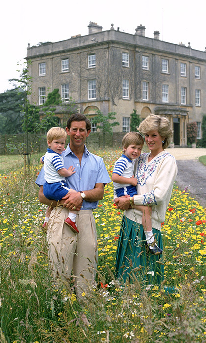 "<strong><a href=""/tags/0/prince-harry"">Prince Harry</a></strong> was asked if <strong><a href=""/tags/0/princess-diana"">Princess Diana</a></strong> would have been proud of the <strong><a href=""/tags/0/heads-together"">Heads Together</a></strong> campaign.