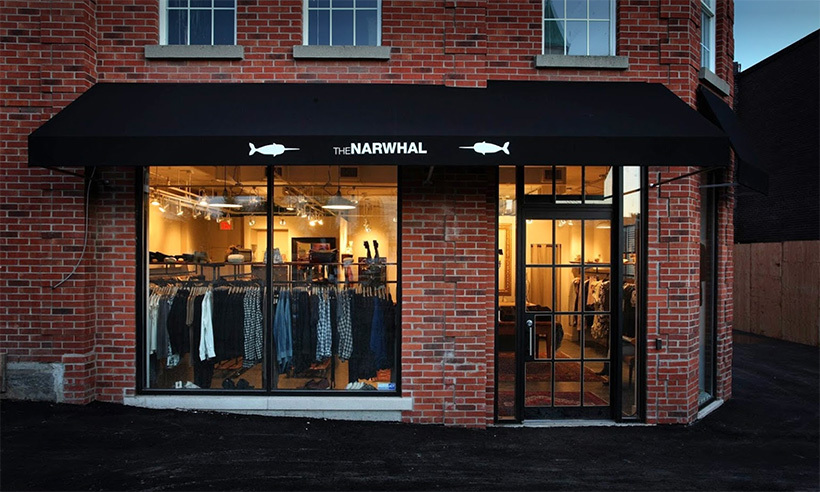 <h4>N is for Narwhal</h4>
