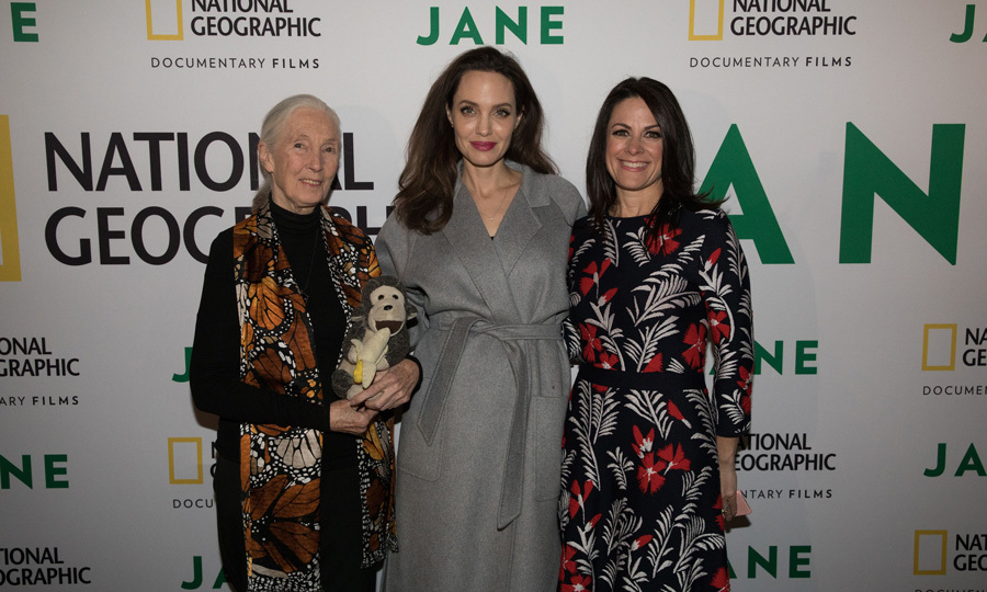 <p>Angelina Jolie posed with Dr. Jane Goodall and National Geographic Global Networks CEO Courteney Monroe before the screening of the feature film <em>JANE</em> at the Hollywood Bowl on October 9. The premiere included a live orchestra, who performed composer Philip Glass' original score for the film.<br /><br />Photo: Rebecca Hale/National Geographic</p>