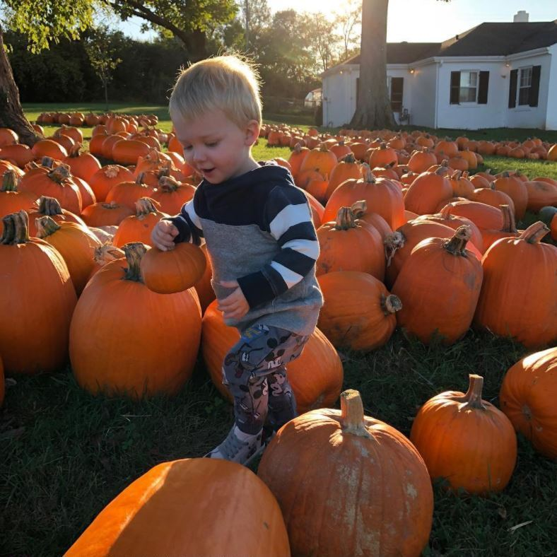 <p>Charles Kelley of Lady Antebellum's little boy Ward had quite the assortment of pumpkins during his trip ahead of Halloween. The almost-two year old held on tight to a miniature pumpkin while perusing the rest of the lot.<br /><br />Photo: Instagram/@charleskelley</p>