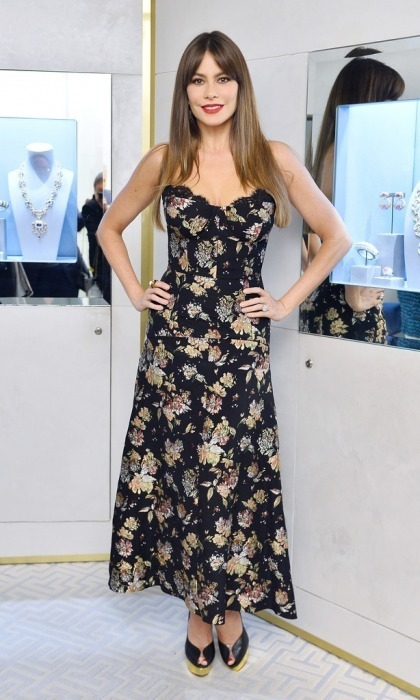 Sofia Vergara dazzled in David Webb jewelry while attending the brand's STOP CANCER charity event at the David Webb boutique on November 10 in Beverly Hills. The Modern Family star wore David Webb's bamboo earrings and Princess Lilian diamond ring. She turned heads in a floral strapless number at the outing which was hosted by actress Elizabeth Chambers.