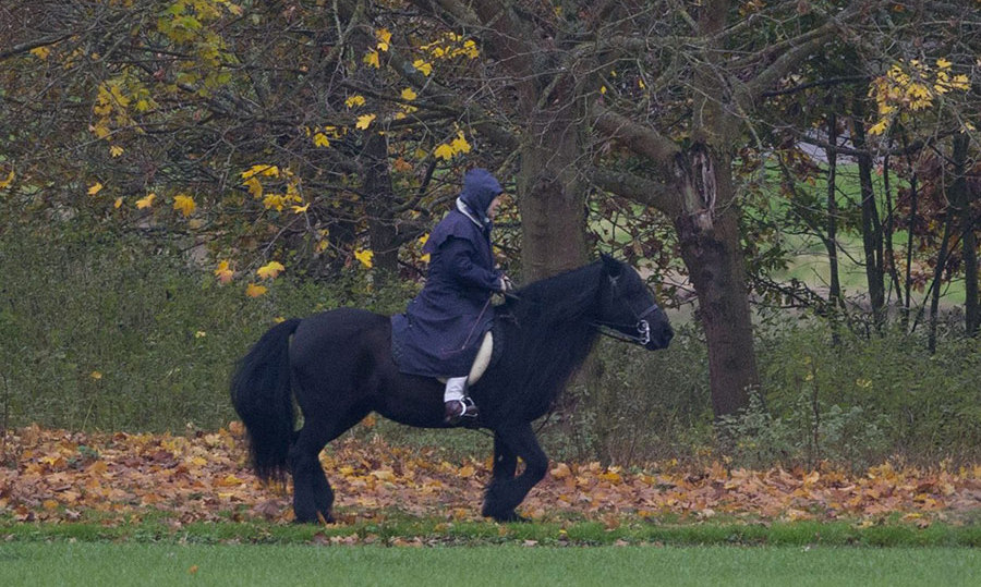 <p>The Queen is pictured horse riding in the grounds of Windsor Castle in November 2017.
