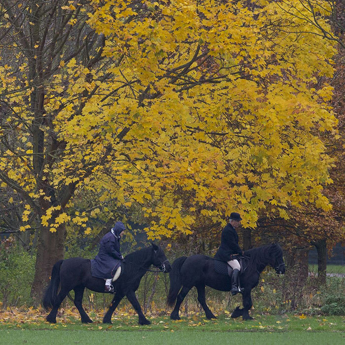 <p>The Queen is pictured horse riding in the grounds of Windsor Castle in November 2017 with her head groom, Terry Pendry.</p>