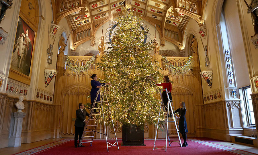 The 20ft Nordmann Fir Christmas tree at Windsor castle.