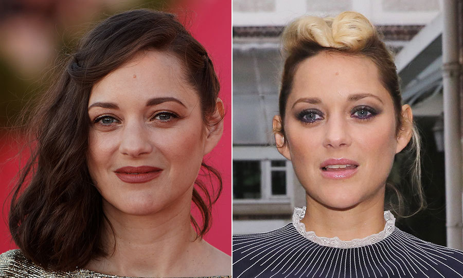 <h2>Marion Cotillard</h2>
