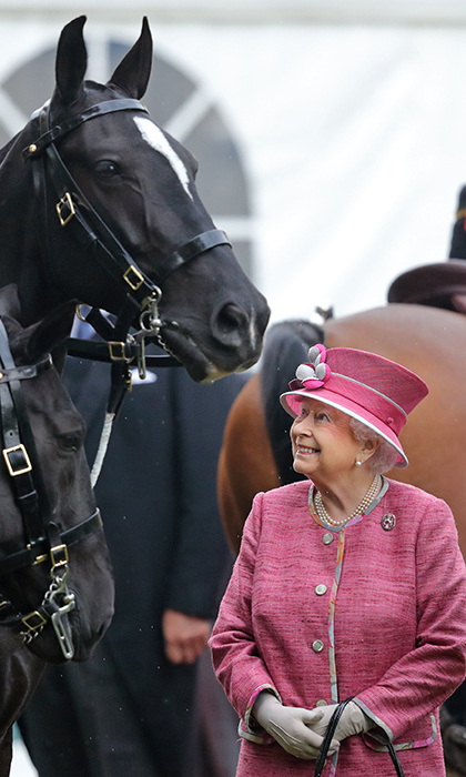 The Queen enjoyed a candid moment with one of her favourite animals on Oct 19. Her Royal Highness, who has a well-known love for horses, admired the steeds at a parade in Hyde Park.