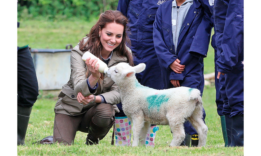 "<h4>KATE'S HAY DAY</h4><p>The Duchess of Cambridge tugged on everyone's heart strings while visiting with schoolchildren at a farm in Gloucestershire, where she stopped to feed an adorable little lamb. ""She said she has lots of animals at home – a dog, a hamster and chickens,"" said a 10-year-old student who Kate made the time to chat with.</p>