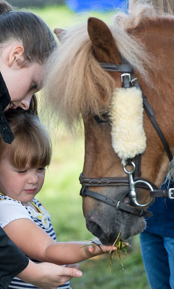 A horse lover at heart, little Mia fed a pony some grass from the palm of her hand.