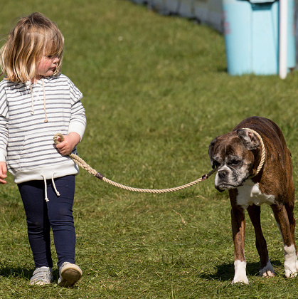 When it comes to animals, Mia doesn't discriminate - she loves them all! Here, the little girl took the reins and walked a pup around at the horse trials.