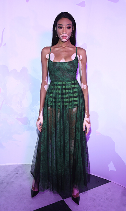 Model Winnie Harlow was also at Dior's masked ball and, once again, floored the crowd with a stunning semi-sheer outfit.