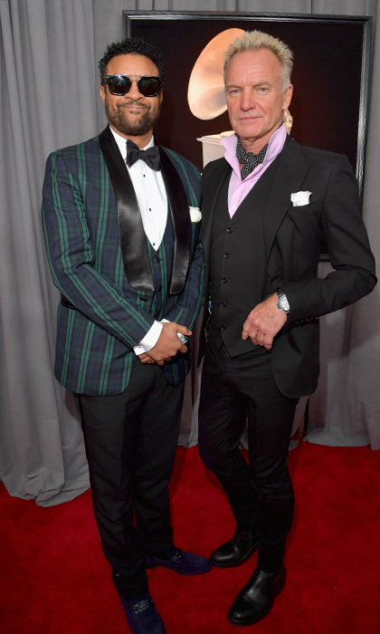 <p>Shaggy and Sting</p>