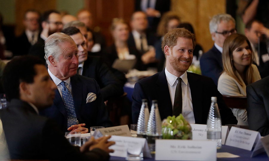Prince Charles and Prince Harry attended the International Year of the Reef meeting at Fishmongers Hall in London on Feb. 14.